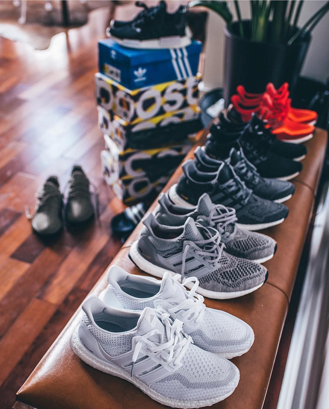 66c48b306ac9 The Complete Beginners Guide To Sneakers. Adidas Ultra Boost. Adidas Ultra  Boost Adidas Shoes