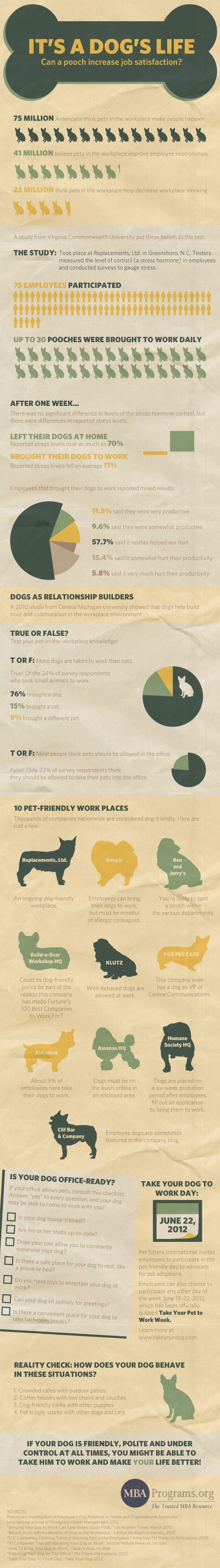 Can Bringing Your Dog To Work Boost Job Satisfaction Infographic