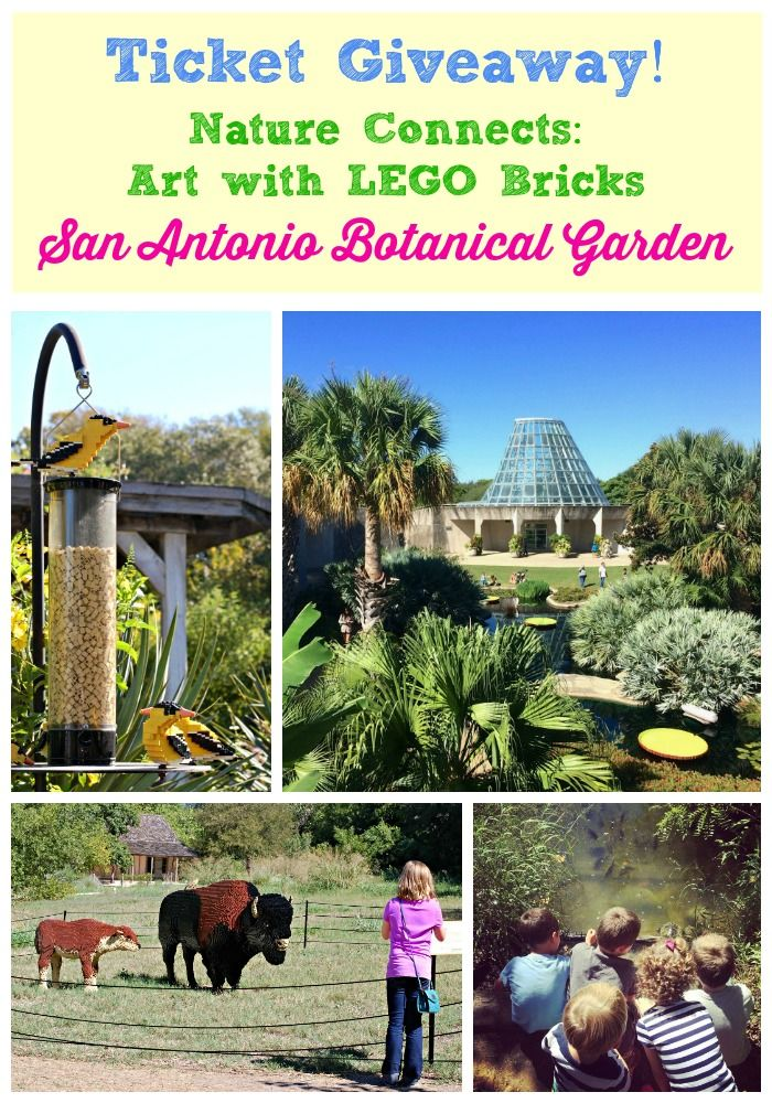 San Antonio Botanical Garden Coupons, Prices, Hours, and