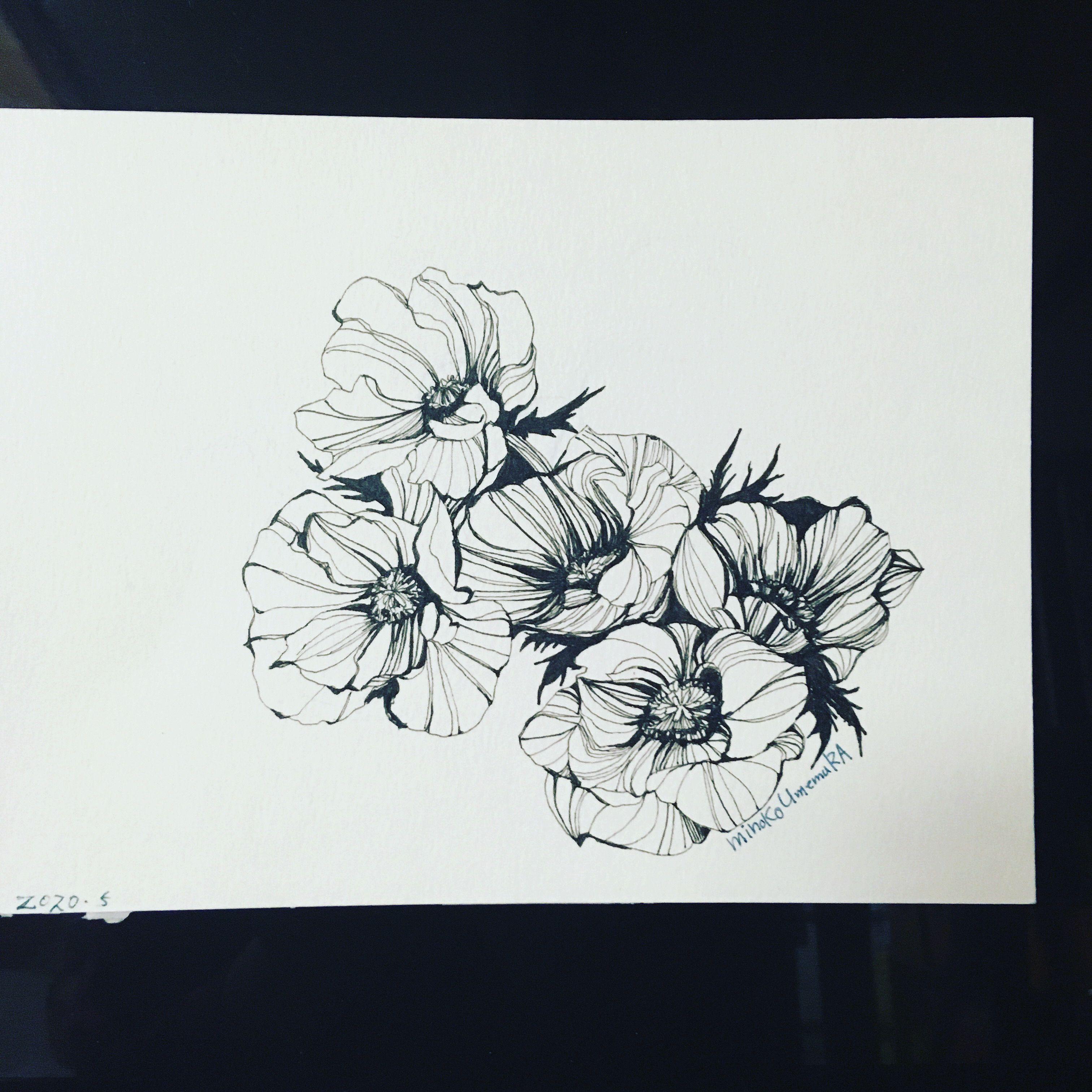 イラスト原画 おしゃれまとめの人気アイデア Pinterest Peony19020 ボールペン画 花 絵 スケッチ