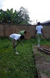 Gbam! NYSC To Post Youth Corpers To Farms (Must Read) http://ift.tt/2rBuPkG