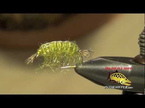 Scud Scud Fly Tying Instructions Recipe And How To Tie Tutorial Classy Scud Fly Pattern