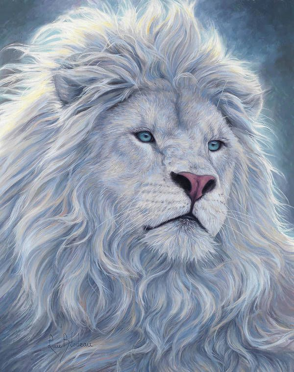 White Lion Art Print by Lucie Bilodeau