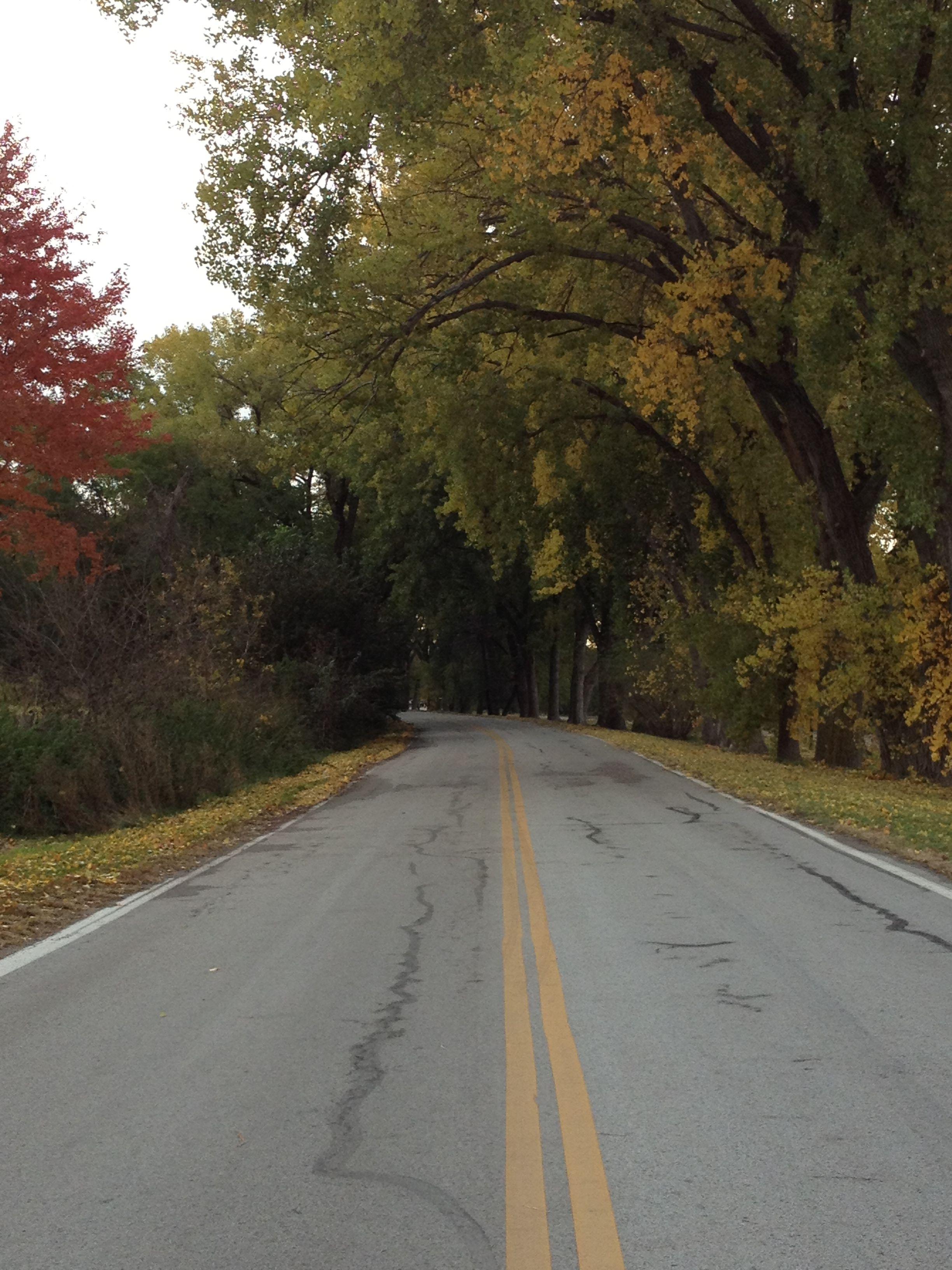 Autumn drive in Nebraska