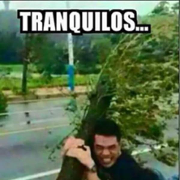 Memes Por El Viento En La Ciudad De Mexico Memes De Viento Vacaciones Frases Humor Memes De Lluvia