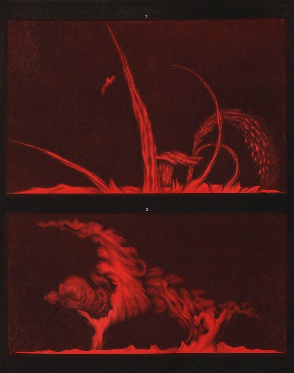 Etienne Leopold Trouvelot Sun Solar Prominences Solar
