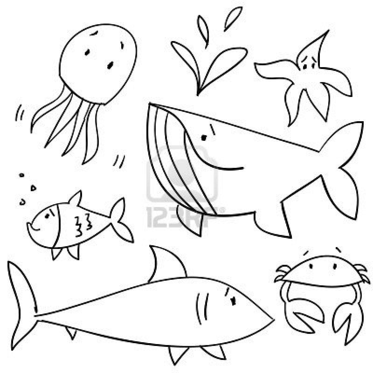 Stock Vector Sea creatures drawing, Animal drawings, Sea