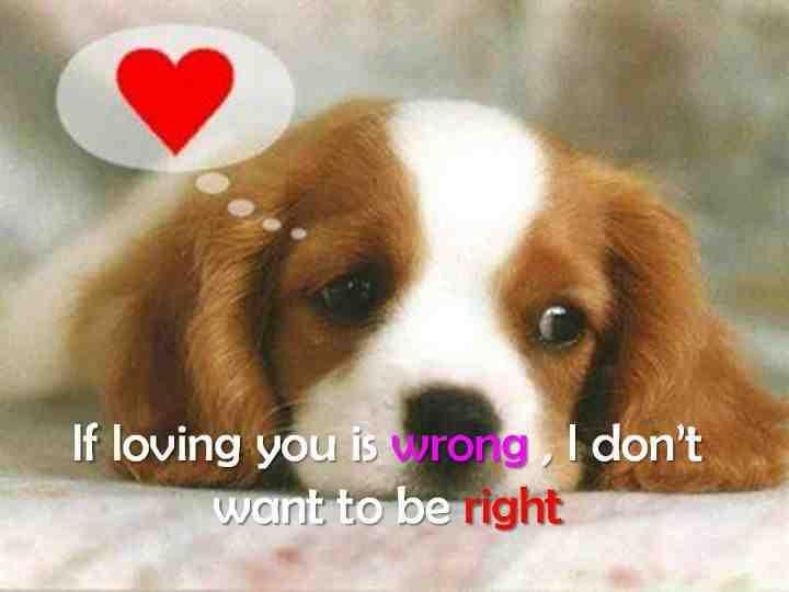 cute puppy quotes sayings