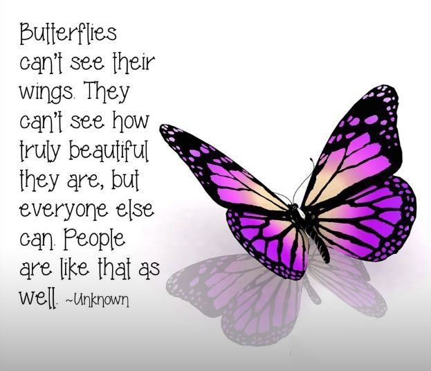 Butterfly Quotes Inspirational Motivational Inspirational Love