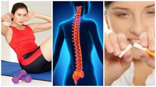 Die Wirbelsäule ist eine komplexe Struktur, die unseren Körper stützt, für Beweglichkeit sorgt und den aufrechten Gang ermöglicht.