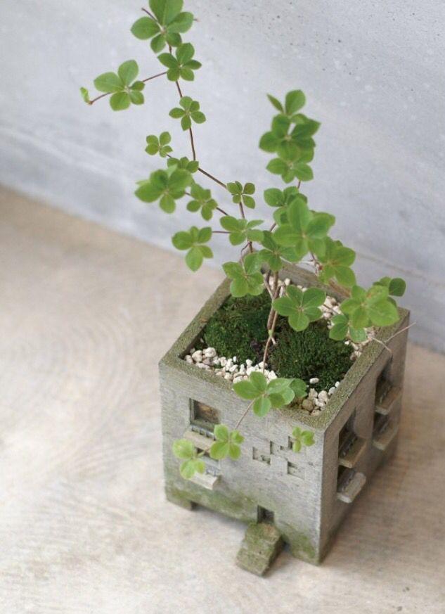 concreto cemento despertador mini jardines formato macetas plantas jardineras de hormign plantadores de cermica