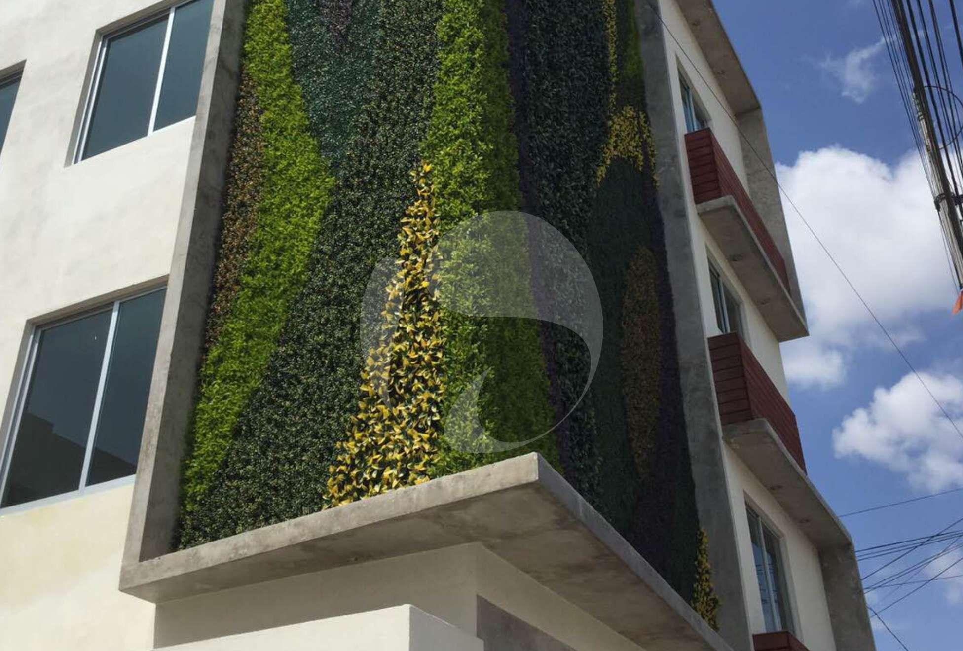 Muros verdes en la ciudad de puebla jardines verticales for Muros y fachadas verdes jardines verticales