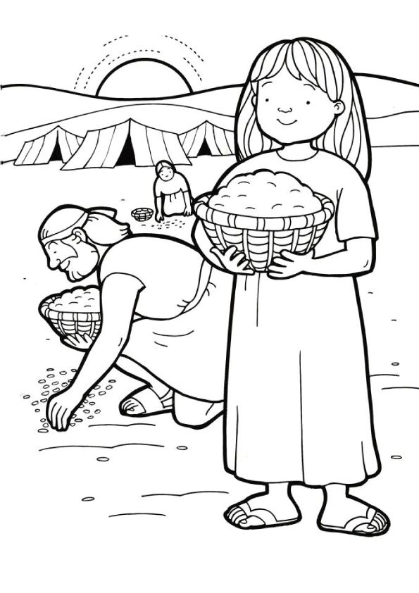 Gathering Manna Sunday School Coloring Pages Sunday School Kids