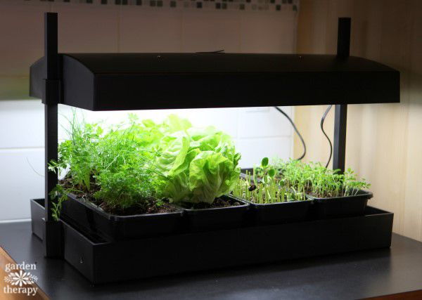 Countertop Gardening for Every Kitchen. Grow LightsKitchen ... & Countertop Gardening for Every Kitchen | Grow lights Countertop ... azcodes.com