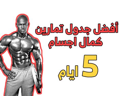 جدول تمارين كمال الاجسام 5 ايام Workout Routine For Men Gym Schedule Workout Schedule