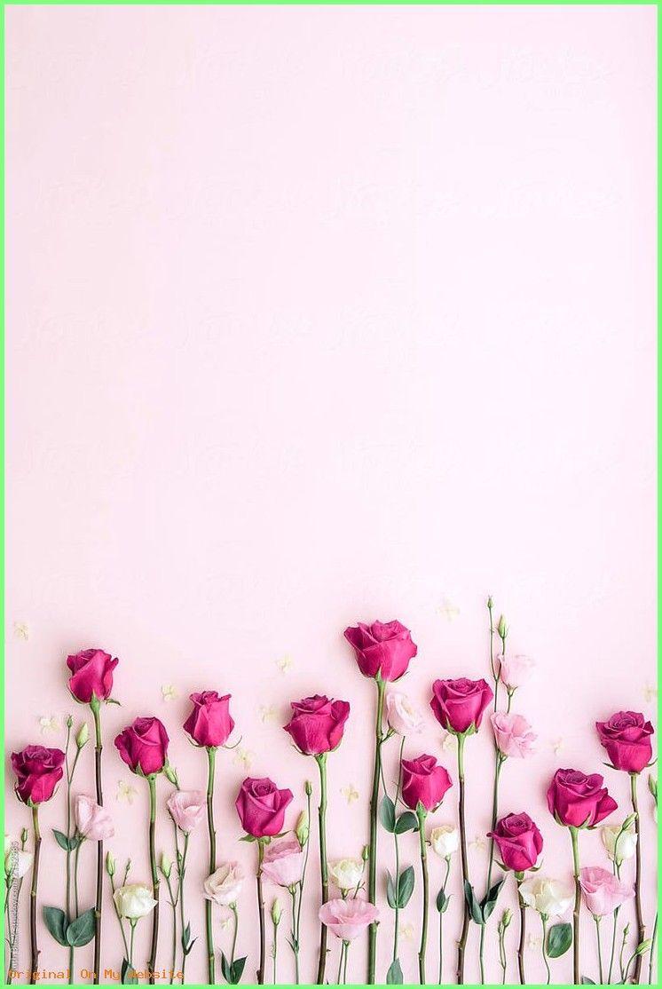 hintergrundbilder tumblr rosa