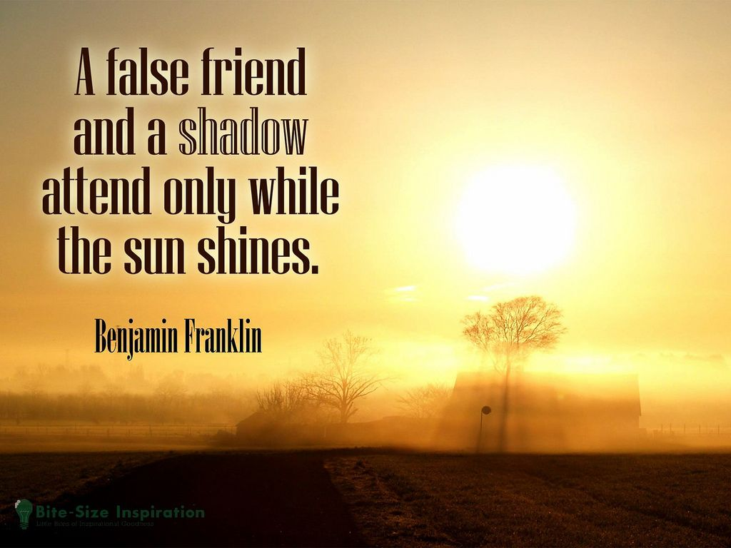 Quotes About True Friendship Friendship Quotes  Friendship Quotes Friendship And Truths