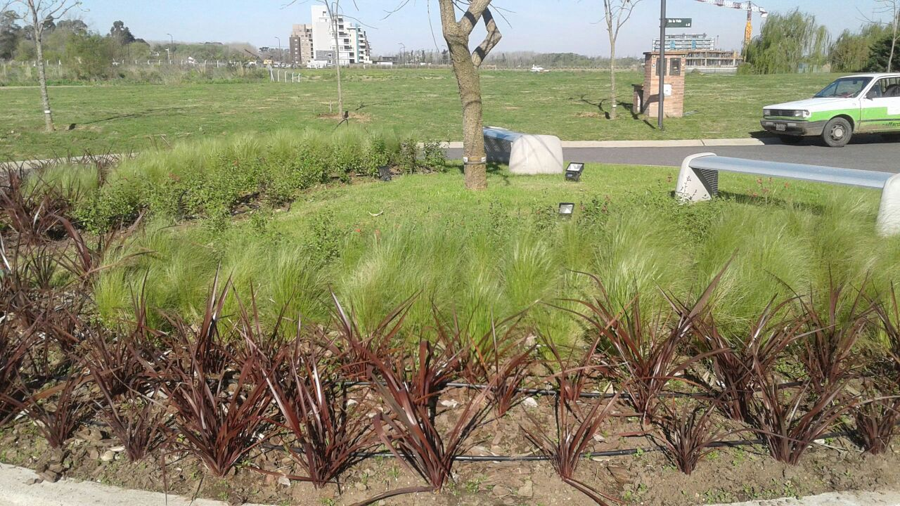 En jardines trigoria dise amos sistemas de riego a medida for Riego de jardines