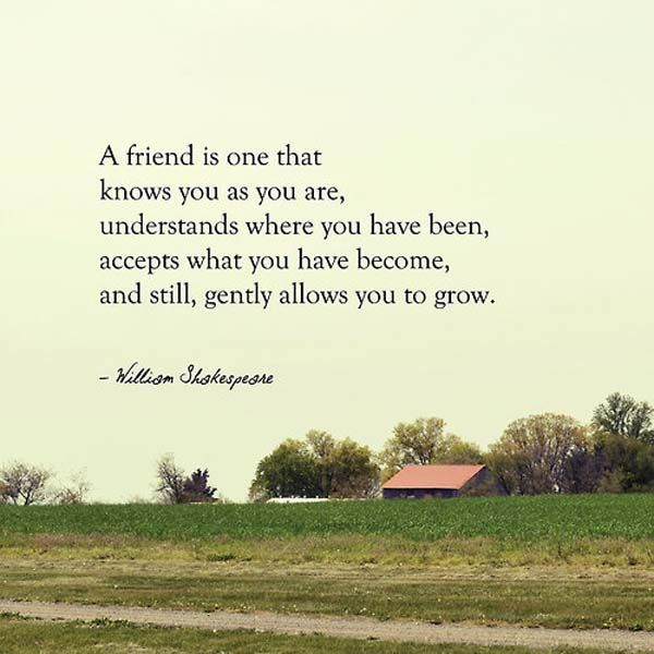 William Shakespeare Quotes About Friendship Mesmerizing Williamshakespearequotesonfriendship1  Inspiration Quotes