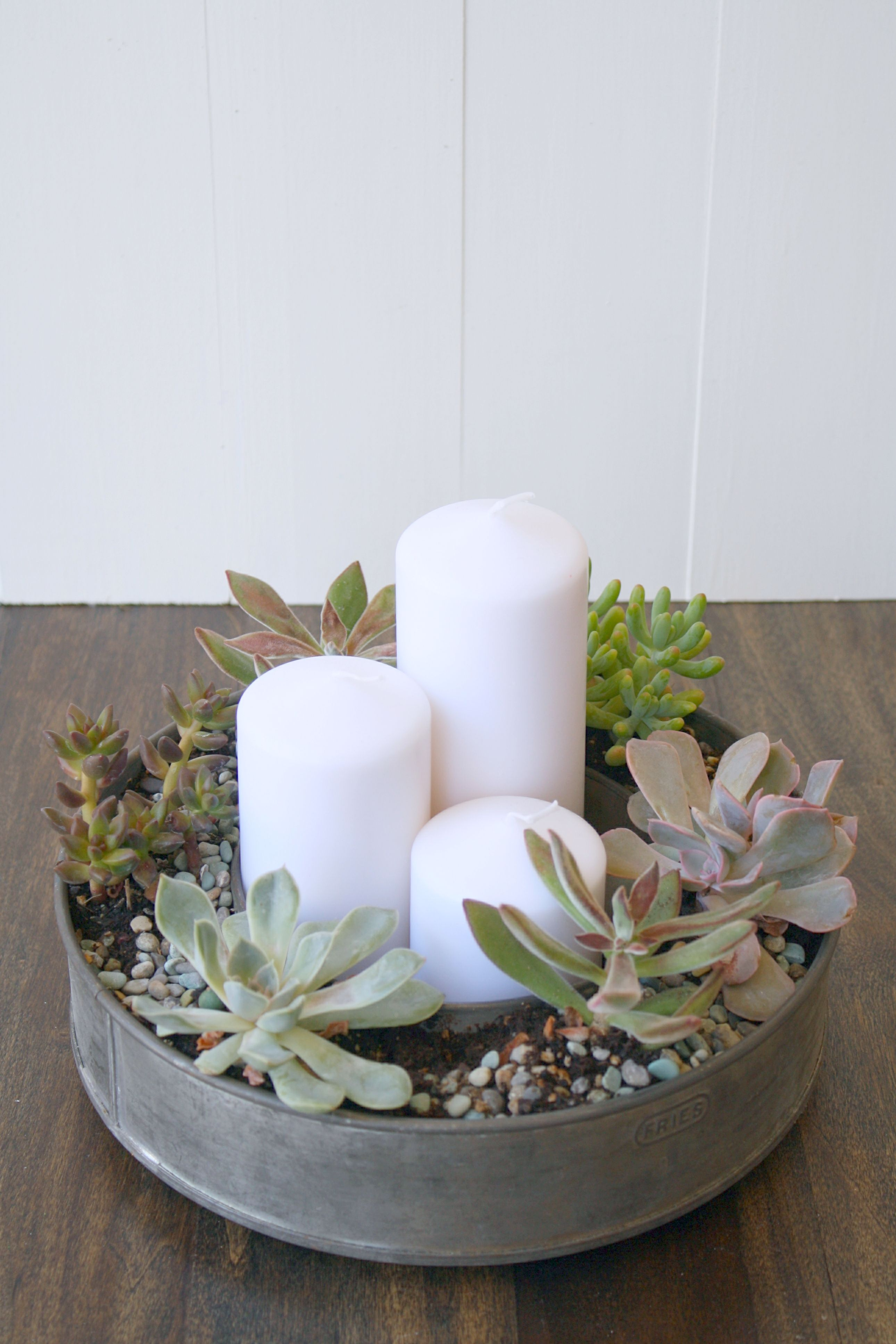 Table Decor Tiny Diy Planters For Succulents And Air Plants