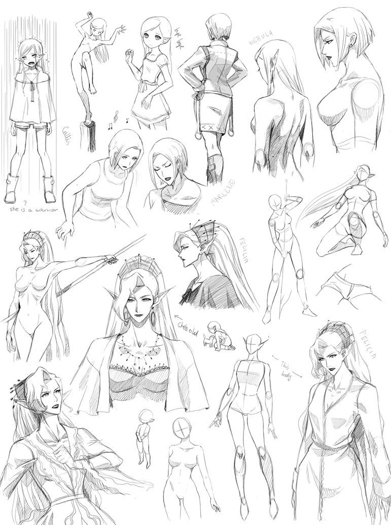 Female anatomy, poses 2 (Targa) by Precia-T | Ref - Esboço ...