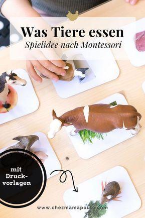 Druckvorlagen: Was Tiere fressen - Chez Mama Poule