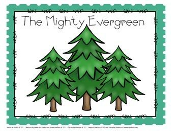 Evergreen Trees Science Activities About The Mighty