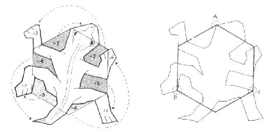 How Escher Creates A Lizard From Hexagon