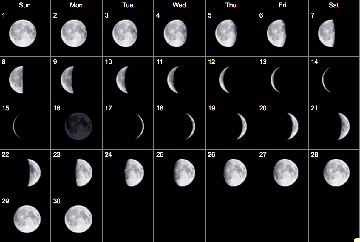 January Calendar 2019 Moon Calendar Moon phase calendar