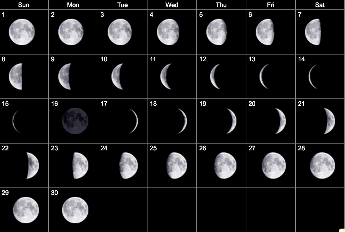 January Calendar Moon Calendar