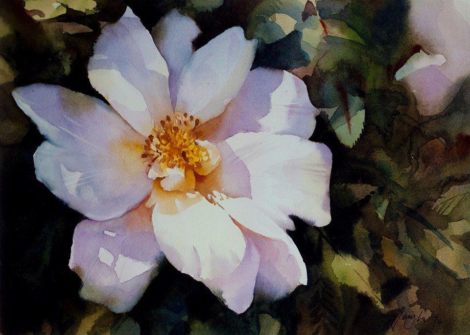 Trevor Waugh Watercolor 花 絵 絵