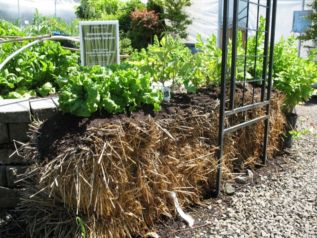 strawbale-garden. It says low maintenence and sustainable but I ...