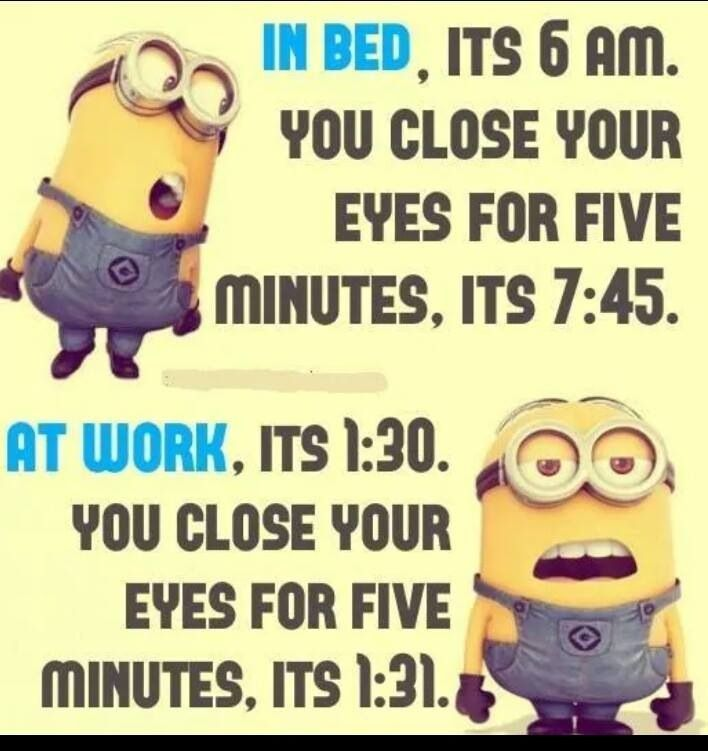 Oh This Is So True Fun Quotes Funny Funny Minion Quotes Funny Minion Memes