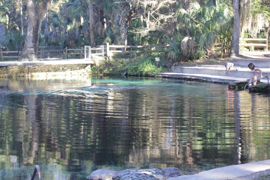 A piscina em Juniper Springs