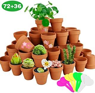 Amazon Com Bulk Terra Cotta Pots In 2020 Succulent Pots Pottery Planters Planter Pots