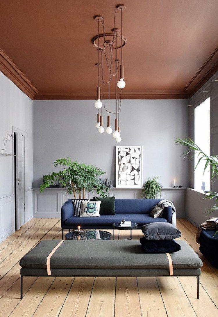 Salon coloré plafond marron mur de couleur gris parquet bois