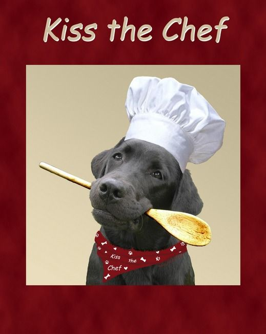 Kiss The Chef Black Labrador Retriever By Amy Reges Black