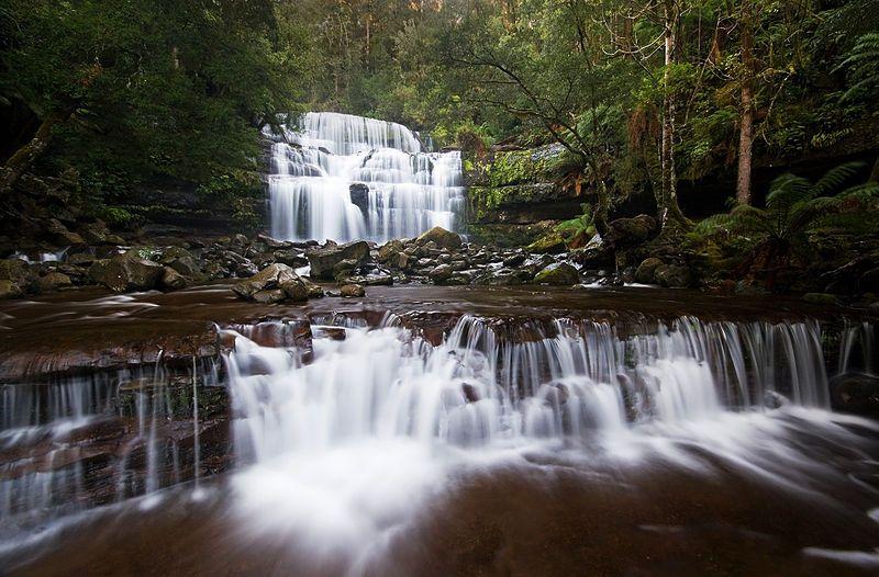 Liffey Falls, Liffey, Tasmania, Aust
