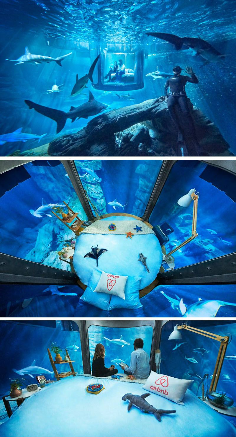 you can now sleep in this underwater room surrounded by sharks rh co pinterest com