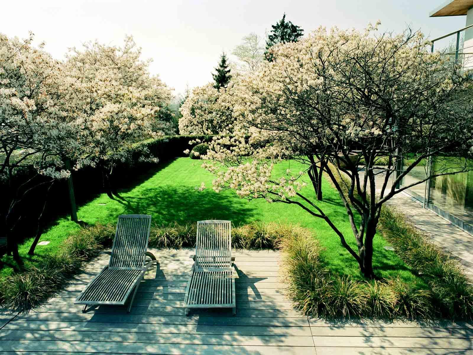 Sitzplatz Mit Gräsern Eingefasst Garden Landscape Design Outdoor Gardens Outdoor Design