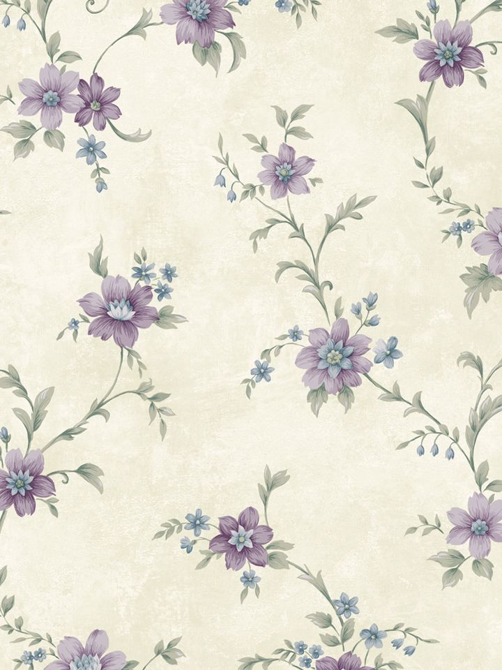 CG11337 ― Eades Discount Wallpaper & Discount Fabric