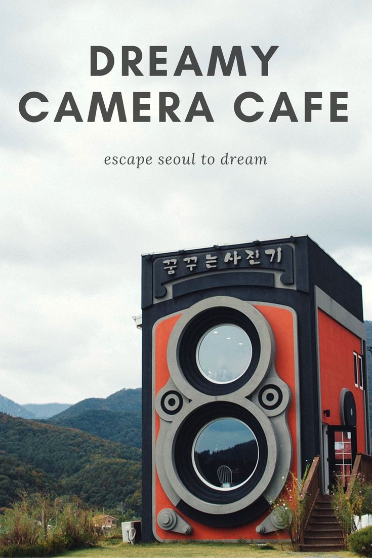 The Dreamy Camera Cafe An Escape From Seoul Seoul Travel Korea Travel South Korea Travel