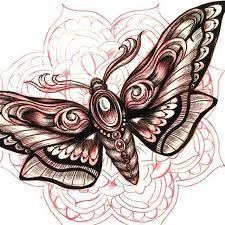 Image Result For Moth Mandala Tattoo Motten Tattoo Motte Tattoo Ideen