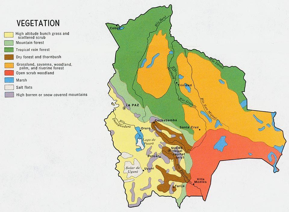 Bolivia Vegetation Latin America Pinterest Bolivia And Latin - Map of bolivia world