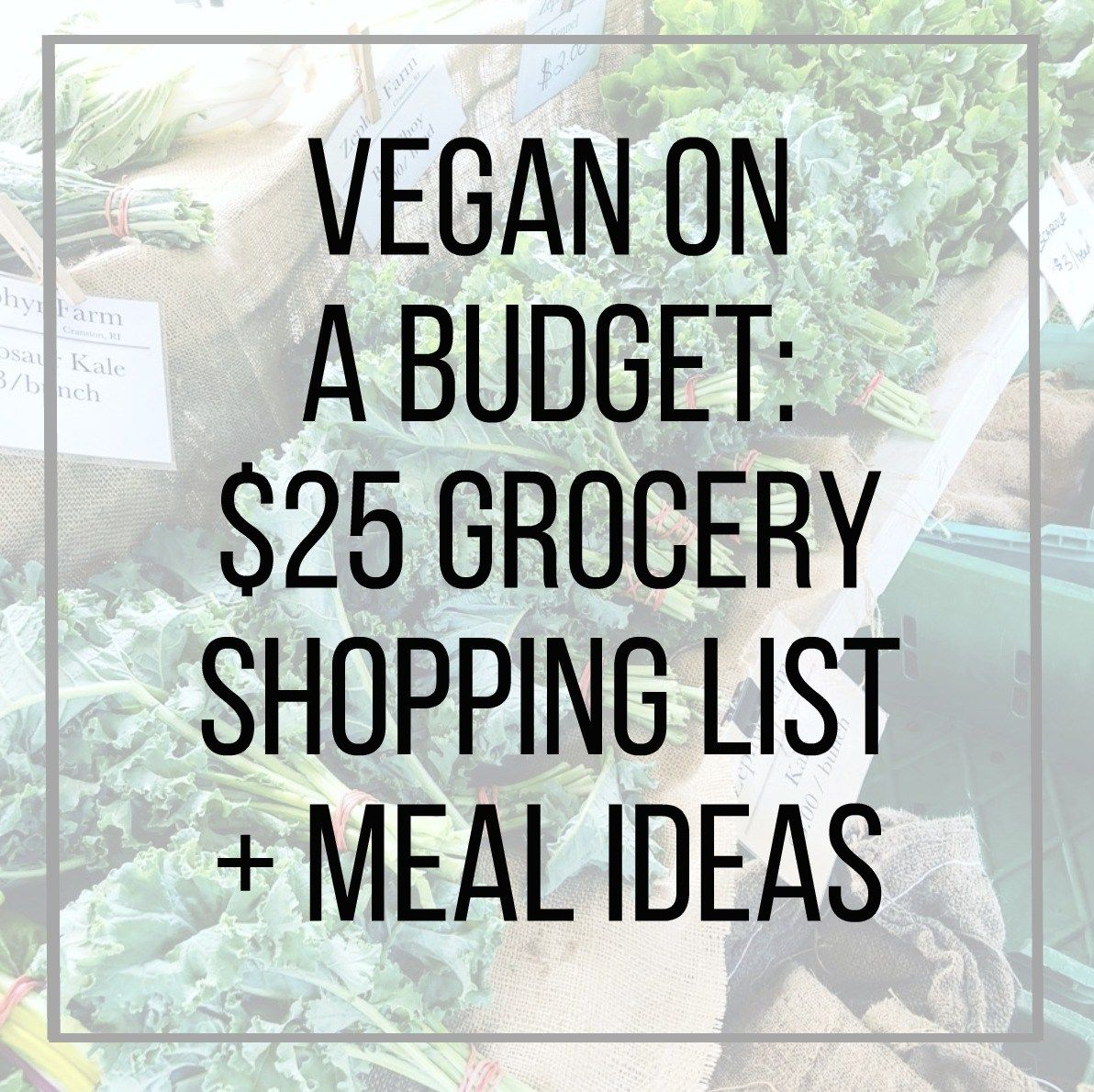 Vegan on a Budget: $25 Grocery Shopping List + Meal Ideas