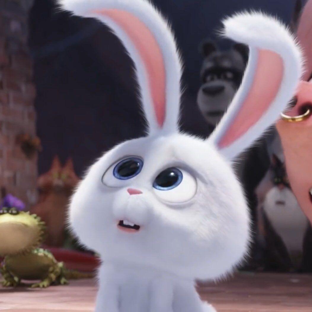 Snow Ball おしゃれまとめの人気アイデア Pinterest Marilolis うさぎ イラスト かわいい ディズニー絵画 うさぎ ペット