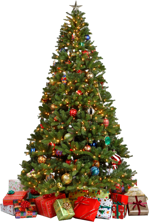 Christmas Tree Png Png Image You Can Download Png Image Christmas Tree Png Free Pn Christmas Tree Wallpaper Christmas Tree Decorations Christmas Tree Clipart