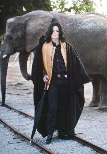 at neverland... And not gonna lie kinda scary but looks flipping Awsome at the same time like dude, he had his own elephants and looked pretty dang good while checkin up on them, but hey black is a nice color on him so not complaining at all.