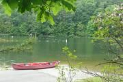 Trout Pond Campground Lost River, WV Facility Details - Trout Pond Recreation Area, WV - Recreation.gov