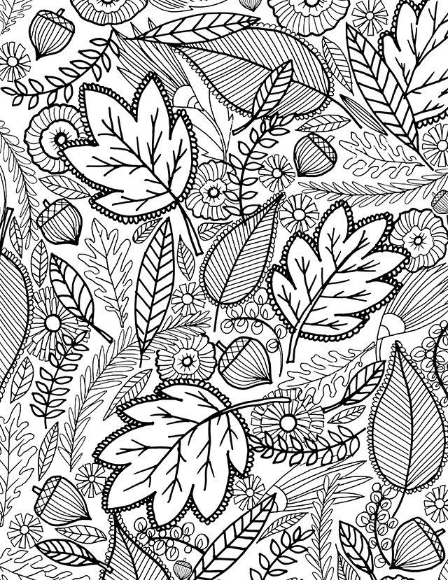 a FALL coloring page for you | Раскраски | Pinterest | Free ...